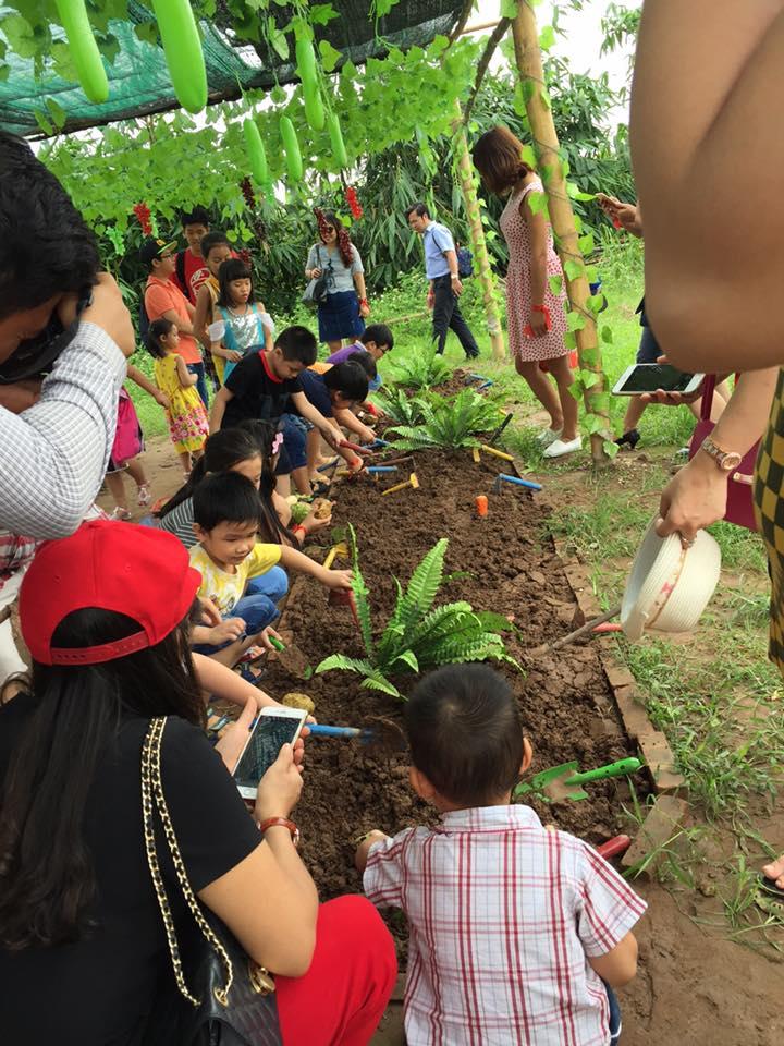 Học cách trồng cây